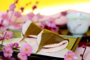 さくら餅と紅梅の写真素材 [FYI04801412]
