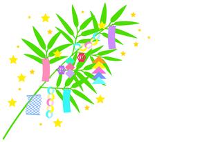 七夕飾り【白背景に描かれた笹飾り】のイラスト素材 [FYI04801458]