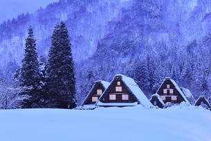 雪の白川郷 合掌造り集落の窓明かり夕景の写真素材 [FYI04801470]