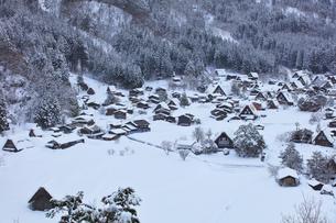 冬の白川郷 城山展望台より合掌造り集落の写真素材 [FYI04801506]