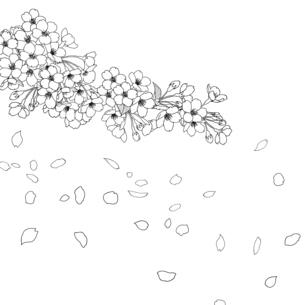 手描き線画 桜 イラストのイラスト素材 [FYI04801580]