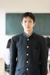 教室の男子学生の写真素材 [FYI04801792]