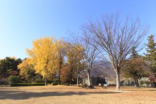 上田城跡公園の写真素材 [FYI04801938]