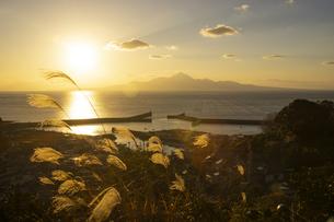 夕暮れ時の有明海と海苔網の写真素材 [FYI04801970]