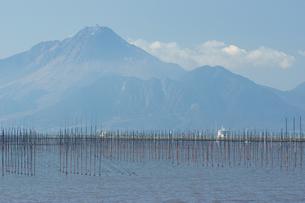 沖新漁港の海苔網と雲仙普賢岳の写真素材 [FYI04801994]