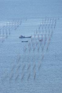 塩屋漁港の海苔網の写真素材 [FYI04801996]