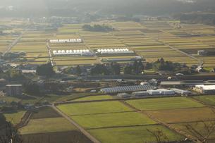 田子山展望所からみえる阿蘇の風景の写真素材 [FYI04802010]