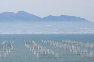 有明海 塩屋漁港の海苔網の写真素材 [FYI04802011]
