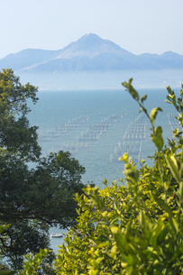 有明海 塩屋漁港の海苔網の写真素材 [FYI04802012]