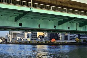 水上バスから見た隅田川大橋の映り込みと紅葉の木々とビル群の写真素材 [FYI04802158]
