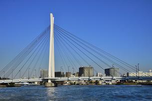 水上バスから見た中央大橋と沢山の街灯とビル群と空の写真素材 [FYI04802165]