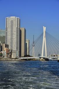水上バスから見た中央大橋と東京スカイツリーとビル群と空の写真素材 [FYI04802169]