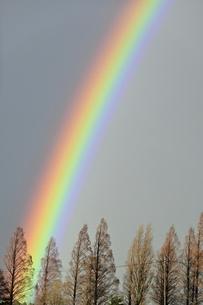 天高く伸びる虹の写真素材 [FYI04802220]