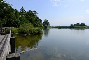 夏の馬見丘陵公園内の大池の写真素材 [FYI04802317]