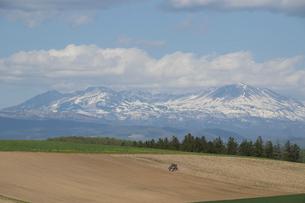 残雪の山並みと春の畑の写真素材 [FYI04802477]