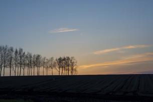 美しい春の夕暮れの空 美瑛町の写真素材 [FYI04802492]
