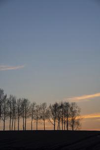 美しい夕暮れの空 美瑛町の写真素材 [FYI04802493]