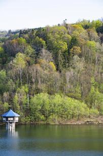 新緑の森と給水塔の写真素材 [FYI04802498]