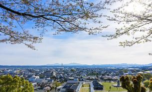 菊池市街地風景 うららかな春の季節 桜 日本の写真素材 [FYI04802555]