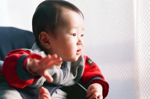 赤ちゃんの写真素材 [FYI04802668]