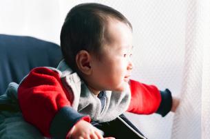 赤ちゃんの写真素材 [FYI04802672]