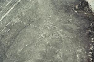 ナスカの地上絵 ハチドリの写真素材 [FYI04802928]