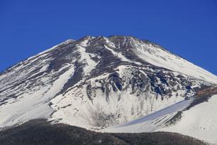 水ヶ塚公園駐車場から迫るような冬の富士山の写真素材 [FYI04803003]