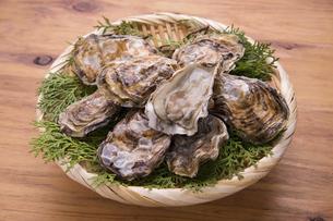 殻付き牡蛎の写真素材 [FYI04803109]