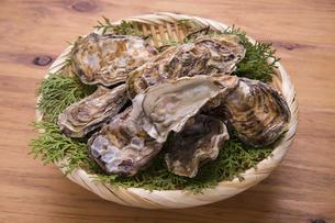 殻付き牡蛎の写真素材 [FYI04803110]