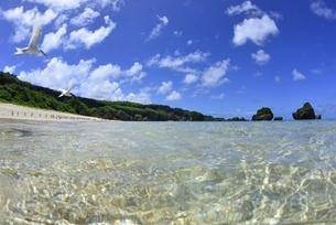 宮古島の海の写真素材 [FYI04803267]