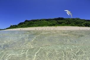 宮古島の海の写真素材 [FYI04803274]