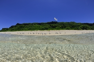 宮古島の海の写真素材 [FYI04803275]