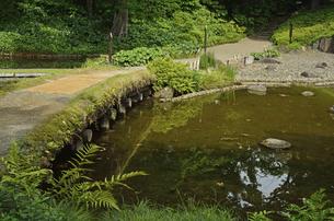 小石川後楽園・大堰川に架かる渡月橋の写真素材 [FYI04803459]