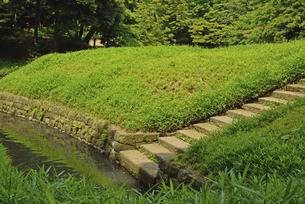 小石川後楽園・舟着場の写真素材 [FYI04803503]