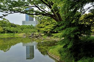 小石川後楽園・大泉水の写真素材 [FYI04803505]