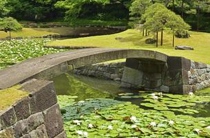 小石川後楽園・内庭 水戸藩書院跡の写真素材 [FYI04803508]