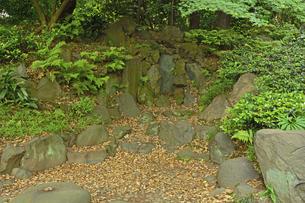 小石川後楽園・枯滝の写真素材 [FYI04803523]