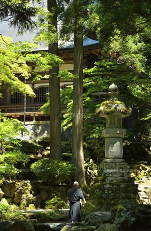 永平寺・石燈籠の写真素材 [FYI04803532]