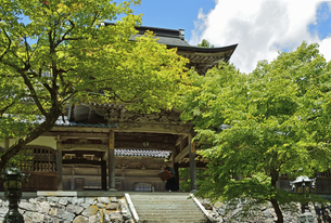 永平寺・中雀門の写真素材 [FYI04803539]