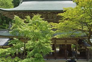 永平寺・山門の写真素材 [FYI04803540]
