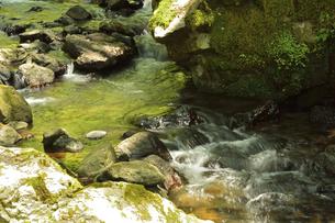 永平寺・永平寺川の流れの写真素材 [FYI04803543]