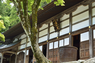 永平寺・法堂の写真素材 [FYI04803553]