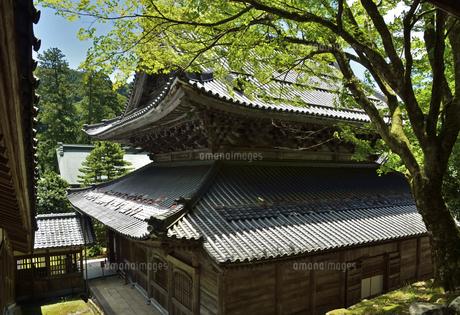 永平寺・仏殿の写真素材 [FYI04803557]