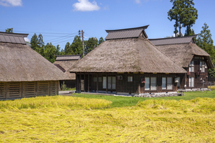 萩ノ島かやぶきの里の写真素材 [FYI04803586]