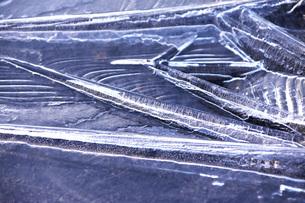 花咲港の氷の写真素材 [FYI04803931]