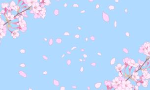 桜のイラスト 背景素材 のイラスト素材 [FYI04804044]