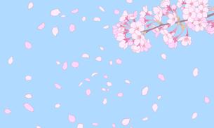 桜のイラスト 背景素材 のイラスト素材 [FYI04804045]