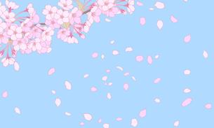 桜のイラスト 背景素材のイラスト素材 [FYI04804046]