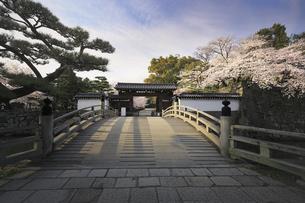 和歌山城・大手門。の写真素材 [FYI04804050]