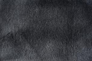 黒色の毛皮素材の写真素材 [FYI04804062]